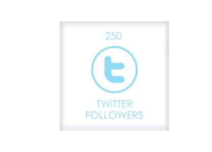 250 TWITTER FOLLOWERS
