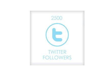 2500TWITTER FOLLOWERS